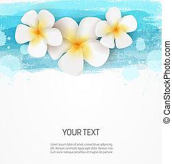 modelo, frangipani, linhas, aquarela, fundo, flores