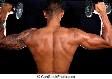 modelo, macho, muscular, condicão física