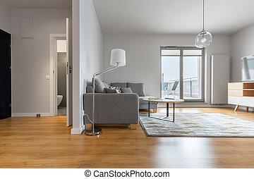 modern élénk, szoba, és, bejárat