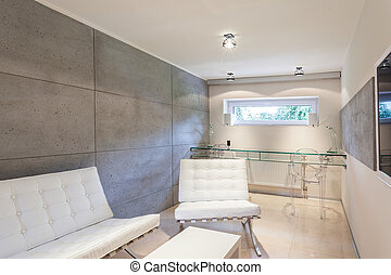 Modern and expensive interior - Horizontal view of modern...
