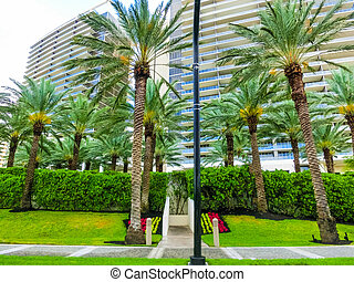 Modern apartment buildings with palm trees at Collins Avenue