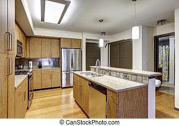 Modern apartment interior. KItchen with granite tops