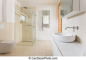 Modern bathroom with glass shower