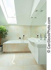 Modern bathroom with roof window