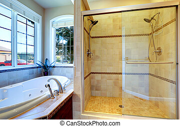 Modern bathroom with whirlpool tub and glass door shower -...