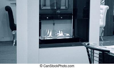 Modern bio fireplot fireplace on ethanol gas.