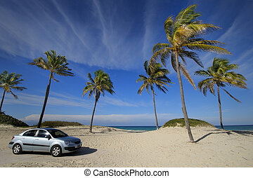 Modern car on tropical beach