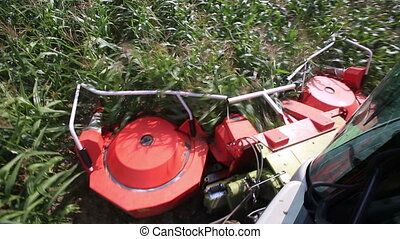 Modern combine harvester cropping maize field