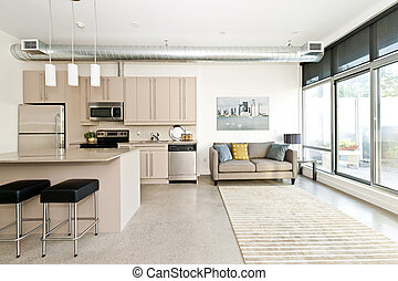 Modern condo kitchen and living room - Kitchen and living...