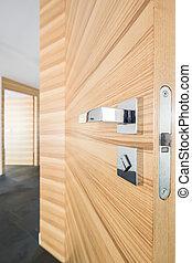 Modern corridor with wooden door - Spacious modern corridor...