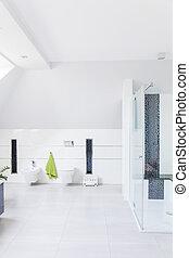 Modern decor of bathroom