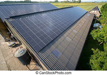 Modern farm with solar panels on the roof of a cowshed
