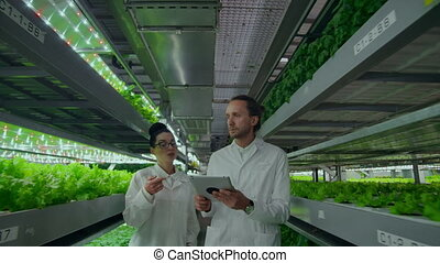 Modern farmers of the future monitor the growth of plants...