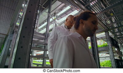 modern farms for growing organic products of the future. two men go down the stairs of a vertical farm with a tablet computer in their hands and 2 women inspect samples of manufactured products.
