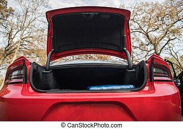 Modern Full Size Car Trunk. Opened Vehicle Trunk.