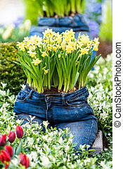 modern garden design with jeans pot