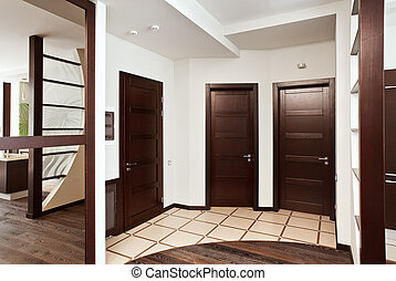 Modern hall interior with many hardwood doors
