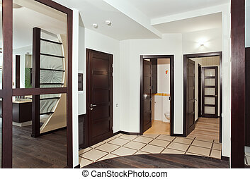 Modern hall interior with many hardwood doors and mirror