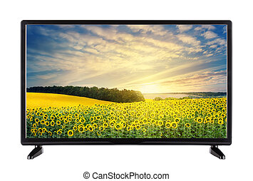 Modern high-definition TV with landscape with sunflowers on the