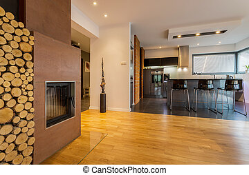 Modern kitchen and drawing room with fireplace
