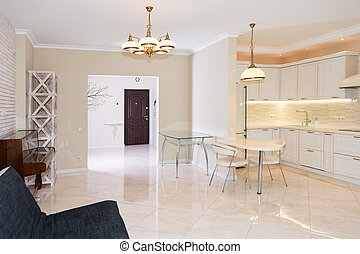 Modern kitchen area attached to the living room. Interior design with classic or vintage and modern elements.