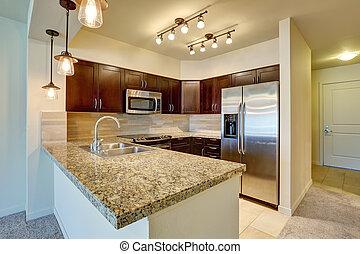 Modern kitchen interior with mahogany cabinets.