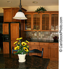 Modern kitchen with center island and beautiful cabinets