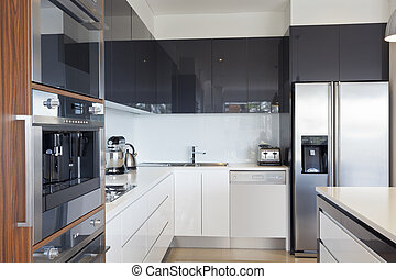 Modern new kitchen with expensive appliances