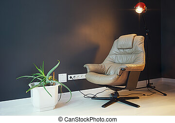 Modern Living Room With Armchair