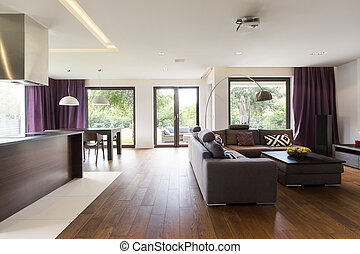Modern living room with sofa - Spacious interior of a modern...