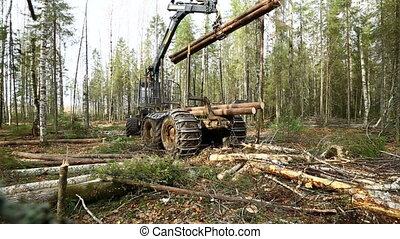 Modern logger loading timber using mechanical grip - View of...