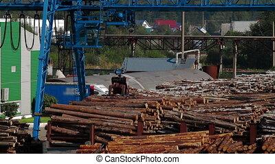 Modern lumber factory