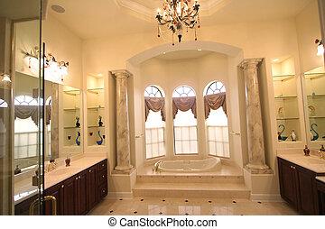 Modern luxury bath room
