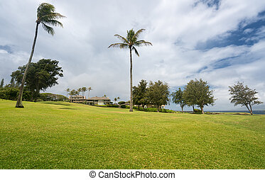 Modern luxury golf course homes at Makaluapuna Point in Maui Hawaii