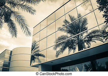 Modern office building with mirror glass windows reflecting sky clouds palm tree