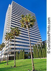 Modern office building with palms