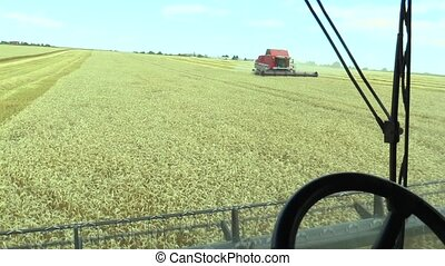 Modern professional harvester combine, field of wheat