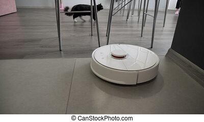 Modern robotic vacuum cleaner cleans the kitchen floor. 4k...