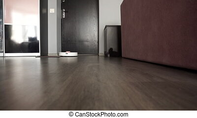 Modern robotic vacuum cleaner in the hallway.