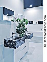 modern toilette room - detail of interior of modern toilette...