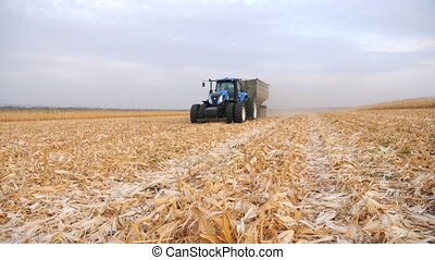 Modern tractor transporting corn cargo at field during harvesting. Agricultural machine driving through farmland with grain in trailer. Scenic countryside landscape. Farming concept. Slow motion.