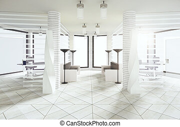 Modern waiting hall in white style office with big windows