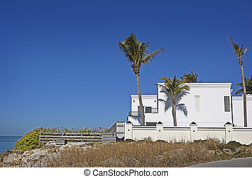 Modern White Building & Palm Trees
