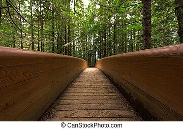 Modern Wood Bridge In Forest