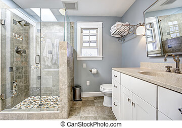moderne, badkamer, interieur, met, glas deur, douche