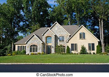 modernisera, hus, philadelphia, förorts-, färsk, tudor, nypremiär, ensam släkt, pa., style.