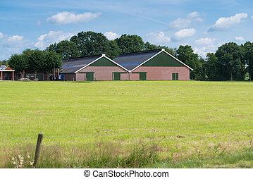 moderno, edificio de granja