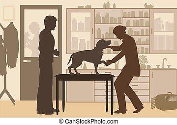 modifié tonalité, clinique, vétérinaire