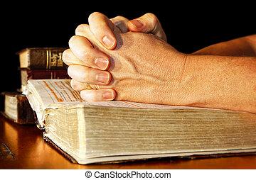 modląci ręki, w, lekki, z, święty, biblie