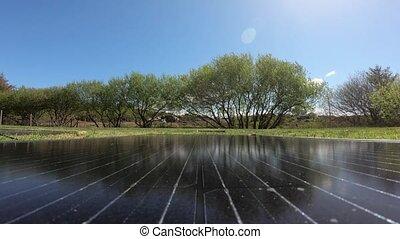modules, arbres, photovoltaïque, vaches, pf, fond, ...
